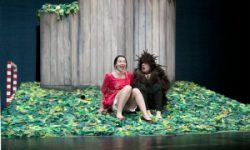 <i> 3 y 4 de noviembre  </i><br><b> El niño Erizo </b><br> de Diana Luque <br>La Machina Teatro </b><br> TEATRO INFANTIL – CIRCUITO RED DE TEATROS ALTERNATIVOS