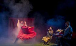 <i> 24 y 25 de noviembre </i> <b><br> La Gaviota </b><br>Teatro del Norte <br> TEATRO
