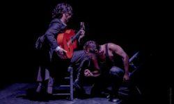 <i>9 de diciembre</i> <br> <b>Recital Flamenco</b><br>Cía Manuel Liñán <br>DANZA FLAMENCO